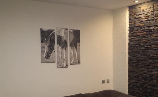 Třídílný obraz - kůň Lady